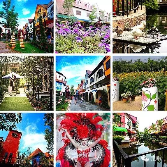湟源10个必去美食乐园另类的主题泰国图片
