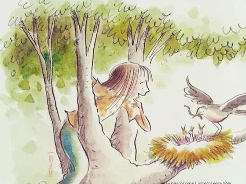 小鸟天堂 动画手绘