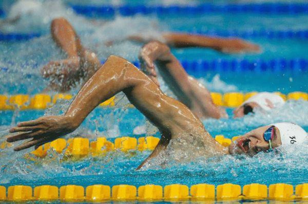 孙杨在800米自由泳比赛中