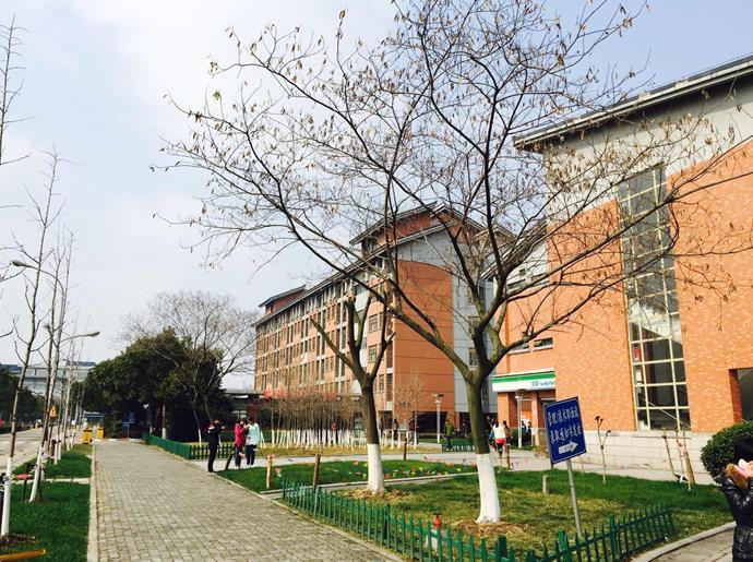北京燕园国际教育,中国梦的绽放 组图