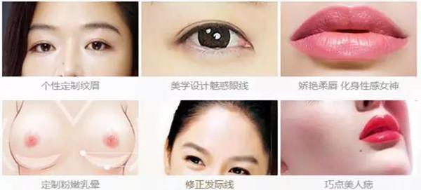 眼睛表皮结构
