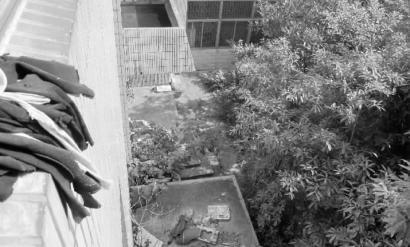 从工科南楼三楼俯视抛尸现场