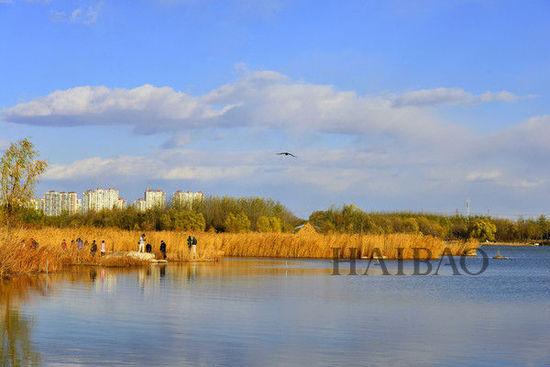 北京奥林匹克森林公园图片