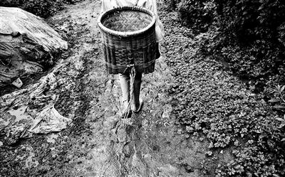 木苦衣伍木走在村里泥泞的小路上,帮家里干农活
