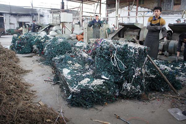 在国家石角镇雷蒙德・李的圣诞树彩灯收受接管厂里,一捆捆入口美国圣诞树彩灯行将被送去轮回再用。