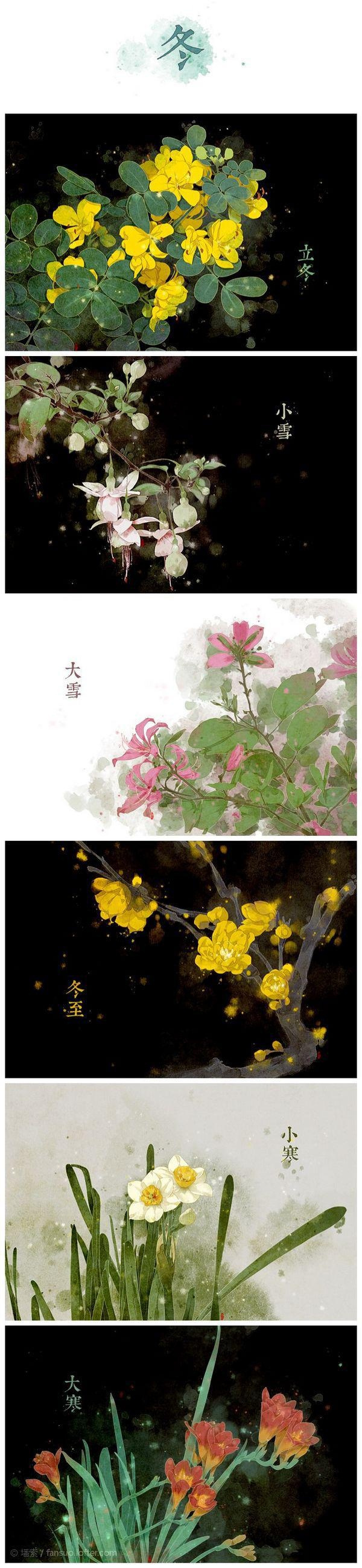 节气之美:二十四节气花卉图