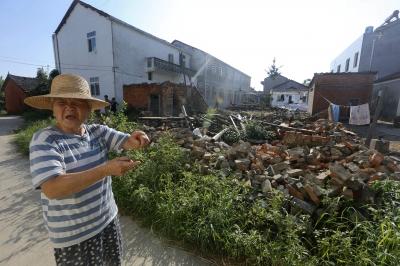 魏婆婆家的屋子被白蚁蛀垮。