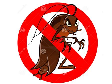 家里蟑螂怎么消灭_家里有蟑螂应该怎么彻底消灭