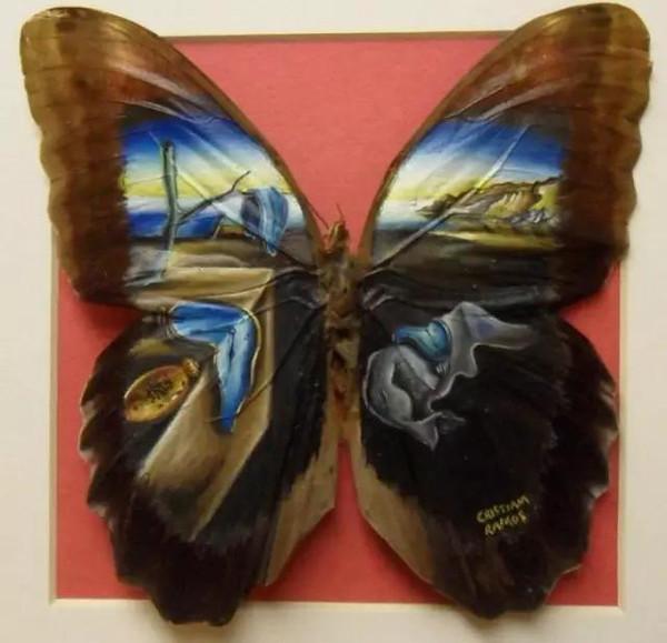 蝴蝶翅膀上作画到底是什么鬼?