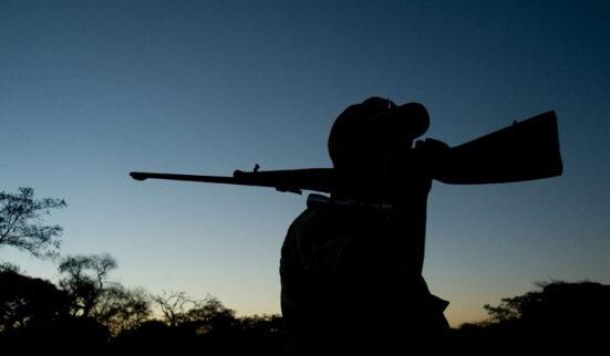 揭欧洲富人青睐的非洲狩猎产业:当地政府年收上亿美元