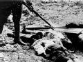 忘不掉的济南五三惨案 日寇屠杀济南无辜军民