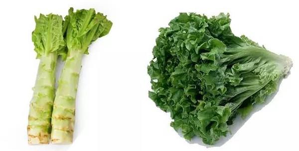 一种蔬菜n个名字?南北奇葩叫法一篇全收!