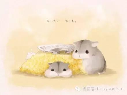 【萌漫画】爆可爱小仓鼠