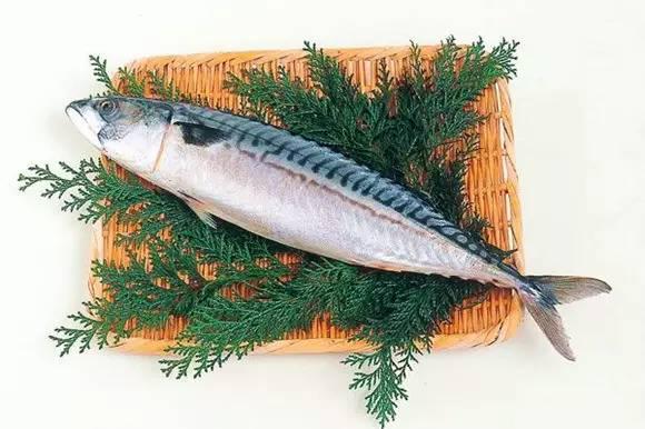 手工编织鱼护鮻片