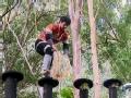 《极速前进中国版第二季片花》第八期 原和玉木桩上如履平地 丁子高狼狈落地
