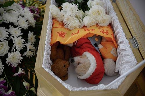 这是一只9岁的宠物狗,它和几只玩物悄然默默地躺在迷你棺材中。