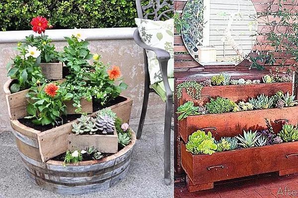 身边的废旧物品diy成花盆,你更喜欢哪个?图片