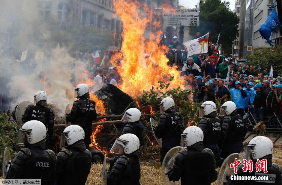 欧洲农民抗议产品价格过低 鸡蛋砸向防暴警察(组图)图片