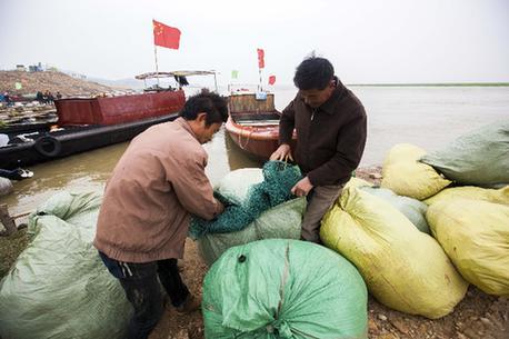 在江西鄱阳湖都昌城西码头,一名渔民在整理收拾渔网