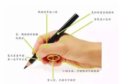 学生正确坐姿 学生正确握笔姿势