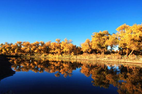 旅游 正文  推荐理由:数万亩梯田绵延数十里,每到九月稻熟之季就转为