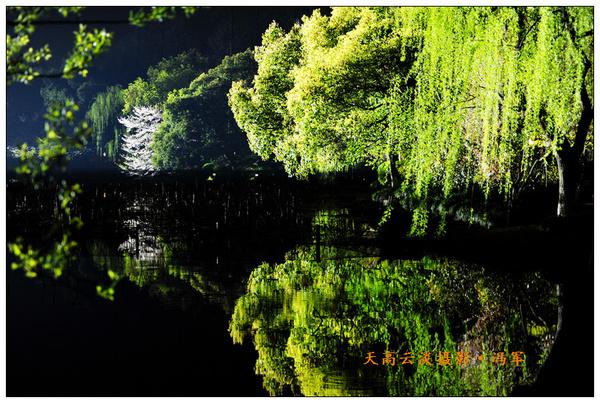 西湖之夜,梦幻的晚上图片