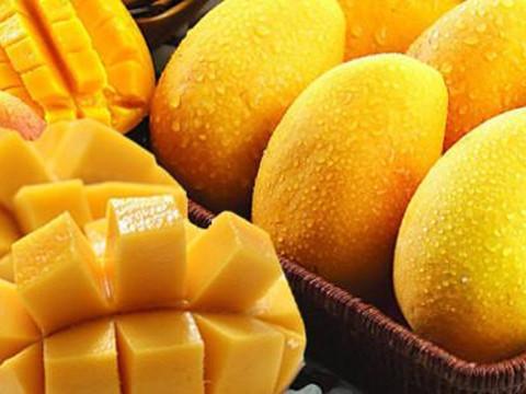 感冒能不能吃芒果