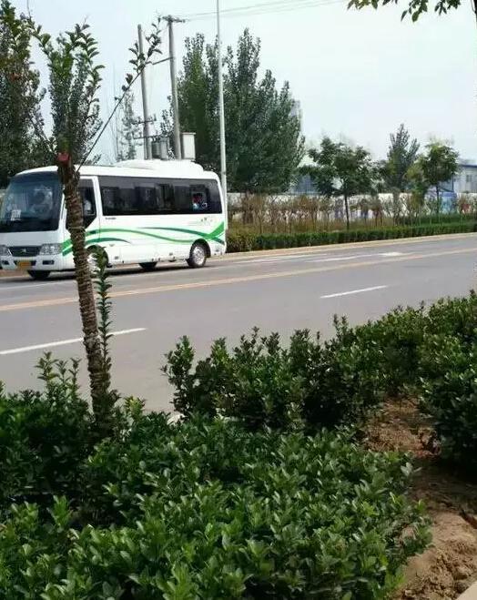 濮阳市一高新校区 医专今天通公交车啦