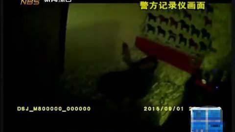 警方来到宾馆发现,嫌疑人不但没有离开现场反而睡起觉来。视频截图