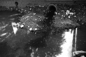 漆黑的污水经过雨水管间接排进南北河