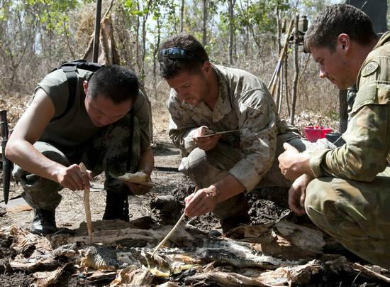 原文配图:中美澳士兵在澳受训野外生存。