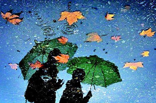 描写秋雨的谚语