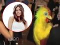 《艾伦秀第13季片花》S13E01艾伦偷拍视频曝珍妮佛婚礼扮小鸡