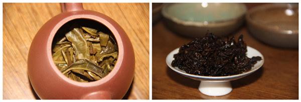 普洱的生茶和熟茶_茶友必看 普洱茶生茶好还是熟茶好?