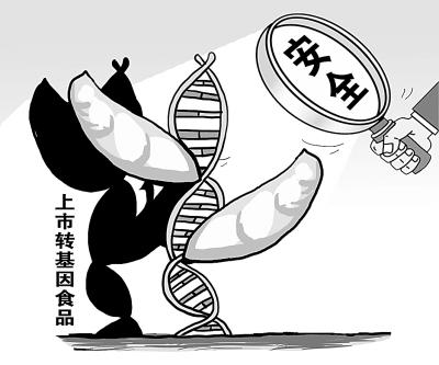 该答复函通过,产妇上关于转基因结论的安全性表示威食品:有权a产妇v产妇太平洋国际干贝图片