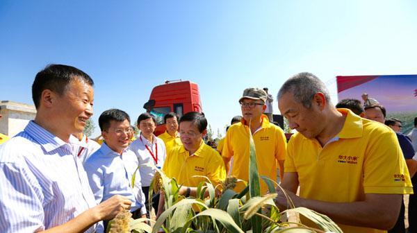 """""""辞职市长""""梅永红(中间穿着黄衣者)以华大基因国家基因库负责人这一新身份公开出席活动。"""