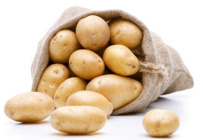 土豆可以去痘印吗_土豆可以去痘印吗_用土豆可以去痘印吗_钟爱