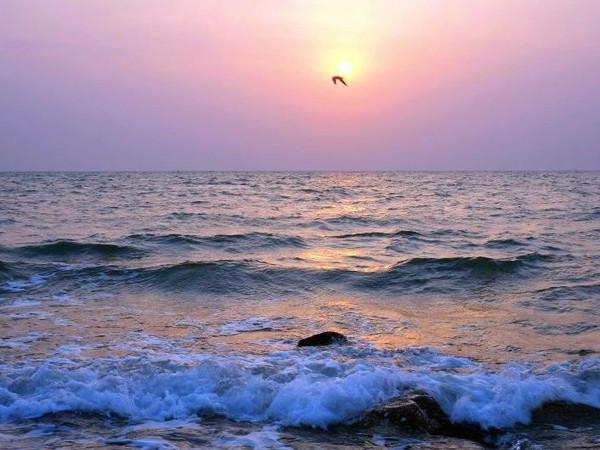 """碣石哪里吃海鲜_既然出海,何以将就?东戴河海鲜之旅的6个""""不得不"""""""