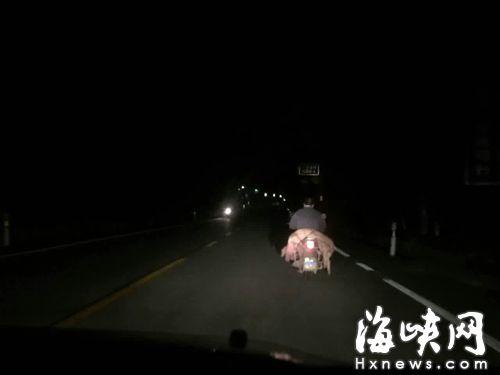 昨晚,樟湖镇有人骑摩托车运病死猪,去向不明