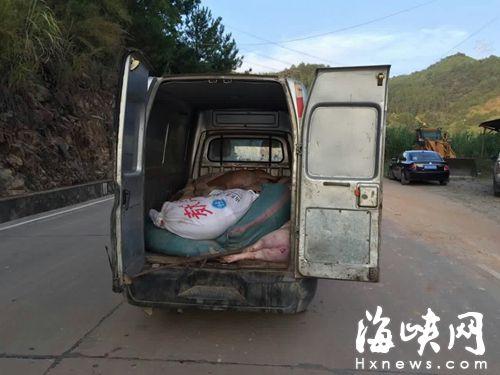 一辆满载死猪的小货车被村民拦下