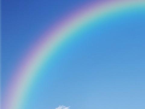 怀念彩虹图片