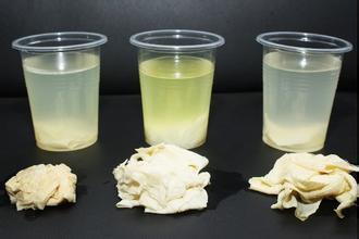如何辨别真假蜂蜜 一瓶冷水就搞定