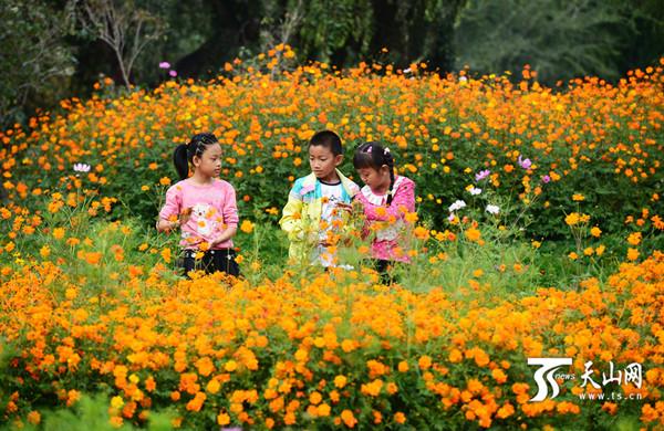 三位小朋友在植物园赏花玩耍.