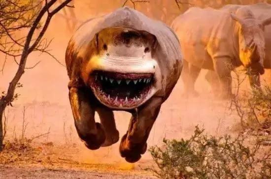 世界上最恐怖的动物_世界上最恐怖的动物 5