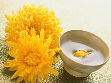 由于在中国古代,菊花又叫做