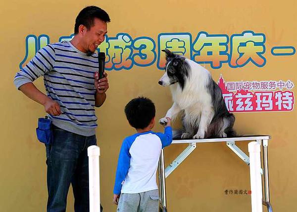 实拍:与小动物亲密接触当中的孩子们