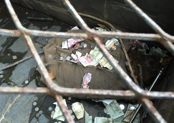 在摊位右边,有两处龟池,一处堆积着几十只小龟,另外一处有一只几十公分大的鳄鱼龟,龟背上沉积着纸币和硬币。
