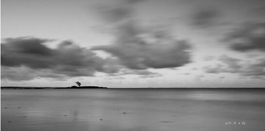 当耳边只有海浪拍打岸边哗哗的声音,当眼前只有一望无际的印度洋,当我那生来的卷毛被海风吹的乱乱的时候,土狼此时只想静静的和你聊一会儿。