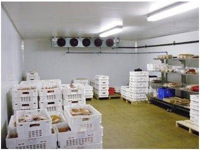 常见的几种水果保鲜冷库安装温湿度