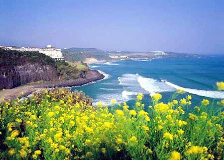 神的花园——济州岛